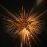 angel-645592_1920
